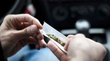Young drivers who use cannabis at higher risk of collisions for at least 5 hours, McGill finds