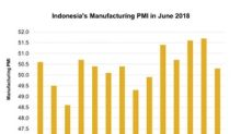 A Look at the Indonesia Manufacturing PMI in June