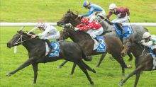 North Pacific makes a splash at Rosehill