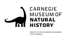 Carnegie Museum of Natural History Partners with TikTok to Create Educational Videos