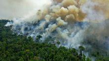 Pesquisa destaca impacto de incêndios na saúde indígena