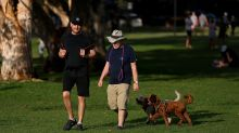 Highly infectious virus warning for dog owners