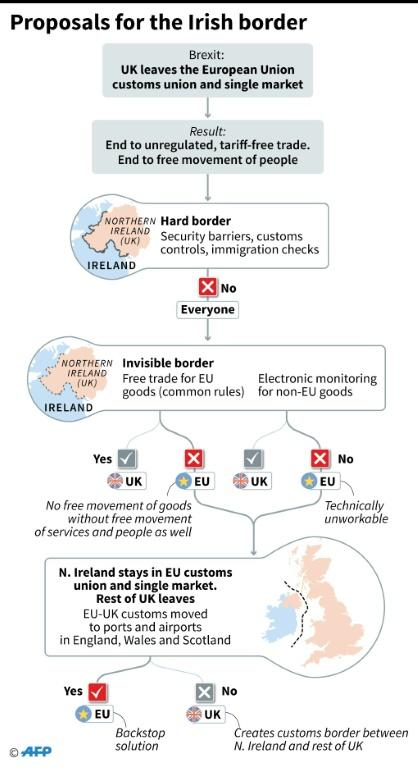 Flow chart showing suggested options for resolving the problem of the Irish border after Brexit, when it will become the only land frontier between the UK and the EU (AFP Photo/Gillian HANDYSIDE)