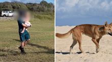 Toddler mauled by dingo while staying with family