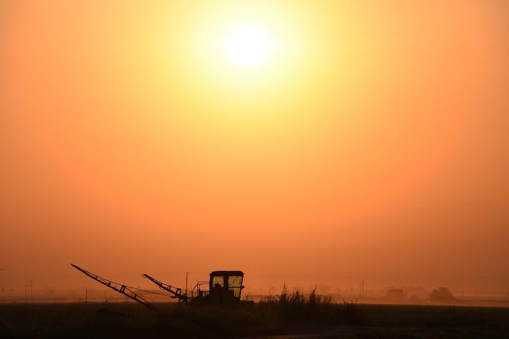 In California's top farming regions, up to 250,000 consumers are highly susceptible to encountering nitrate contamination in their drinking water, according a report released earlier this month (AFP Photo/Robyn Beck )