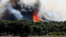 """Feux de forêts : les incendies touchent désormais """"tous les départements"""" estime la Fédération nationale des sapeurs-pompiers"""