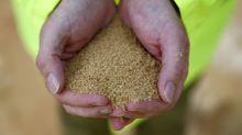 Grupo de açúcar Tereos obtém alívio financeiro até 2022