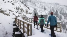 Canadians are embracing the chill in favour of cold-weather vacations