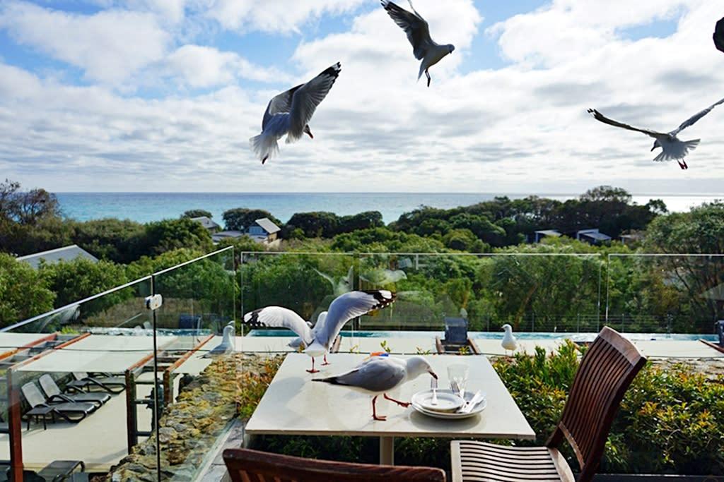 『澳洲。西澳』 Bunker Bay推薦住宿 五星級Pullman Bunker Bay Resorts  邦克爾灣(Bunker Bay)海景第一排 倚水而建獨棟Villa 夜晚有超壯觀滿天星空 蛙鳴鳥叫不絕於耳 有著純樸的大自然生態 還有無敵海景游泳池  雄獅 玩轉西澳 七日 粉紅湖 沙漠小探險之旅