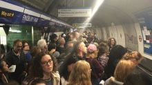 TfL Tube delays: Piccadilly line part-suspended as disruption hits four lines during rush hour