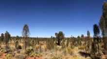 Three of the best Australian winter trips