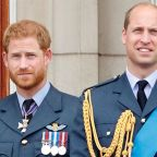 Prince William and Prince Harry Just Re-teamed Up to Reveal New Deets About Princess Diana's Statue