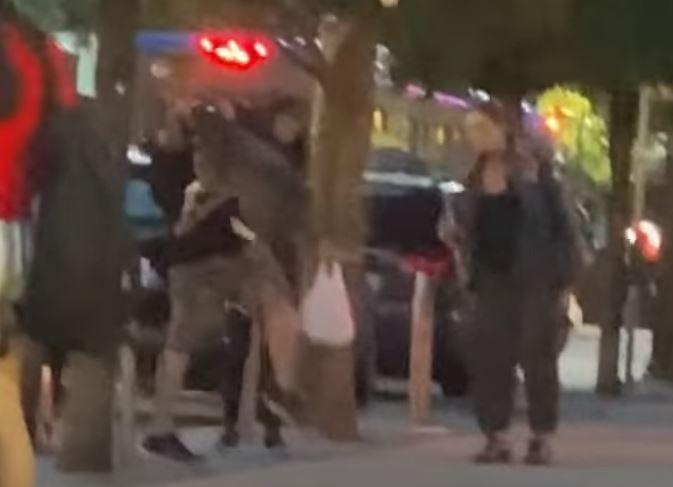 SEE IT: Man body slams his pit bull on crowded sidewalk
