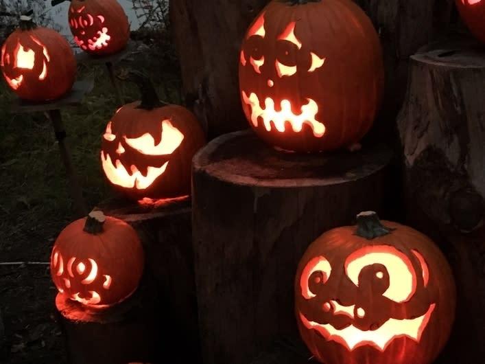 Lambertville Nj Halloween Pumpkins 2020 What Will Halloween In Newtown Look Like In 2020?