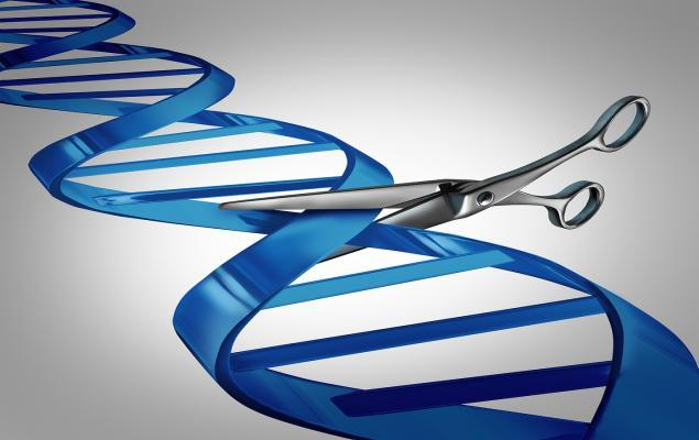 Solid Biosciences Surges on DMD Gene Therapy Study Amendments