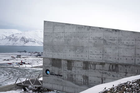 International gene bank Svalbard Global Seed Vault (SGSV) near Longyearbyen on Spitsbergen, Norway, October 19, 2015. REUTERS/Anna Filipova