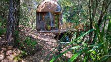 (FOTOS) Mushroom Dome Cabin: así es el alojamiento más popular de Airbnb
