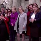 NZ's next parliament will be most diverse ever