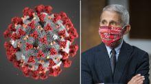 'More infectious': Top doctor warns of mutated strain of coronavirus