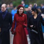 'Snob' Prince William 'wanted to make sure Harry wasn't blindsided by lust' with Meghan