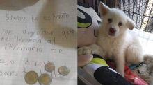 Niño dejó a su perro en un albergue porque su papá le pegaba, pero le sigue enviando cartas y dinero