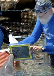 Dolphin uses iPad to learn to identify objects