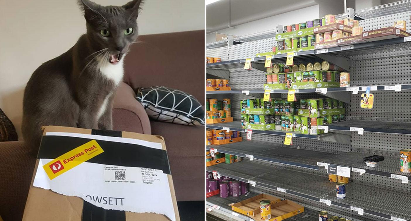 'Mum had to send cans': Woman's fury over pet food shortage at supermarkets