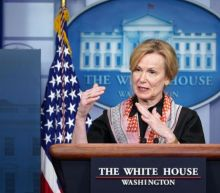Birx says curve makes it clear not all Americans are following social distancing guidelines