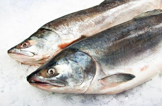FDA approves world's first GMO fish: fast-growing Atlantic Salmon