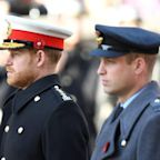 Harry and William's Procession Order at Philip's Funeral Isn't Meant to Send a Signal