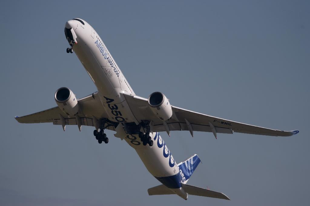 If the aviation market continues to soften, Airbus and Boeing could face a disappointing year (AFP Photo/ERIC PIERMONT)