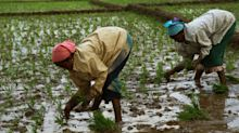 "Crop Insurance Subsidy Disbursement From States ""Lukewarm"", AIC Chairman Says"