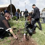 Olive tree with soil from Ethiopia crash site unites mourners