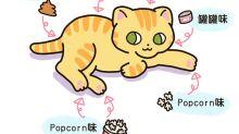 [貓奴的日常] 貓咪身上的氣味
