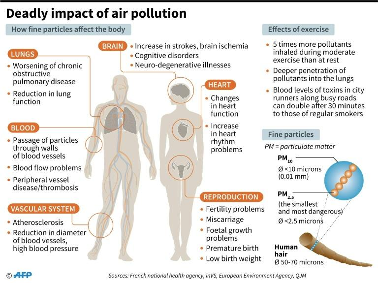 PM2.5 pollution is small enough to enter the bloodstream via the respiratory system, leading to asthma, lung cancer and heart disease (AFP Photo/Alain BOMMENEL, Sophie RAMIS)