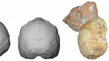 Identificado na Grécia o Homo sapiens não africano mais antigo
