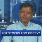 Pot stocks too pricey, says 'dean of valuation'