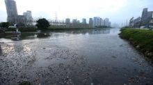 Despoluição do rio Pinheiros pode receber R$4,5 bi, governo de SP prepara anúncio para rio Tietê