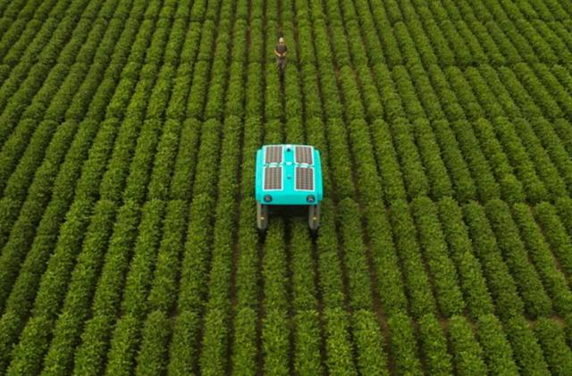 Alphabet's Mineral moonshot wants to help farmers with robotic plant buggies