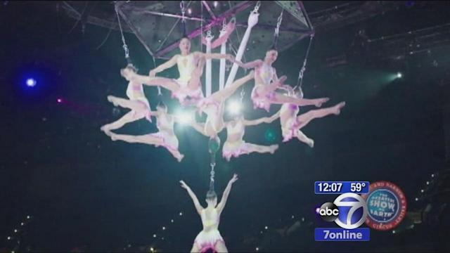 Circus act goes horribly awry
