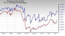 Constellation Brands Efforts Well on Track: Should You Hold?