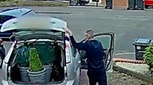 Birmingham plant thief