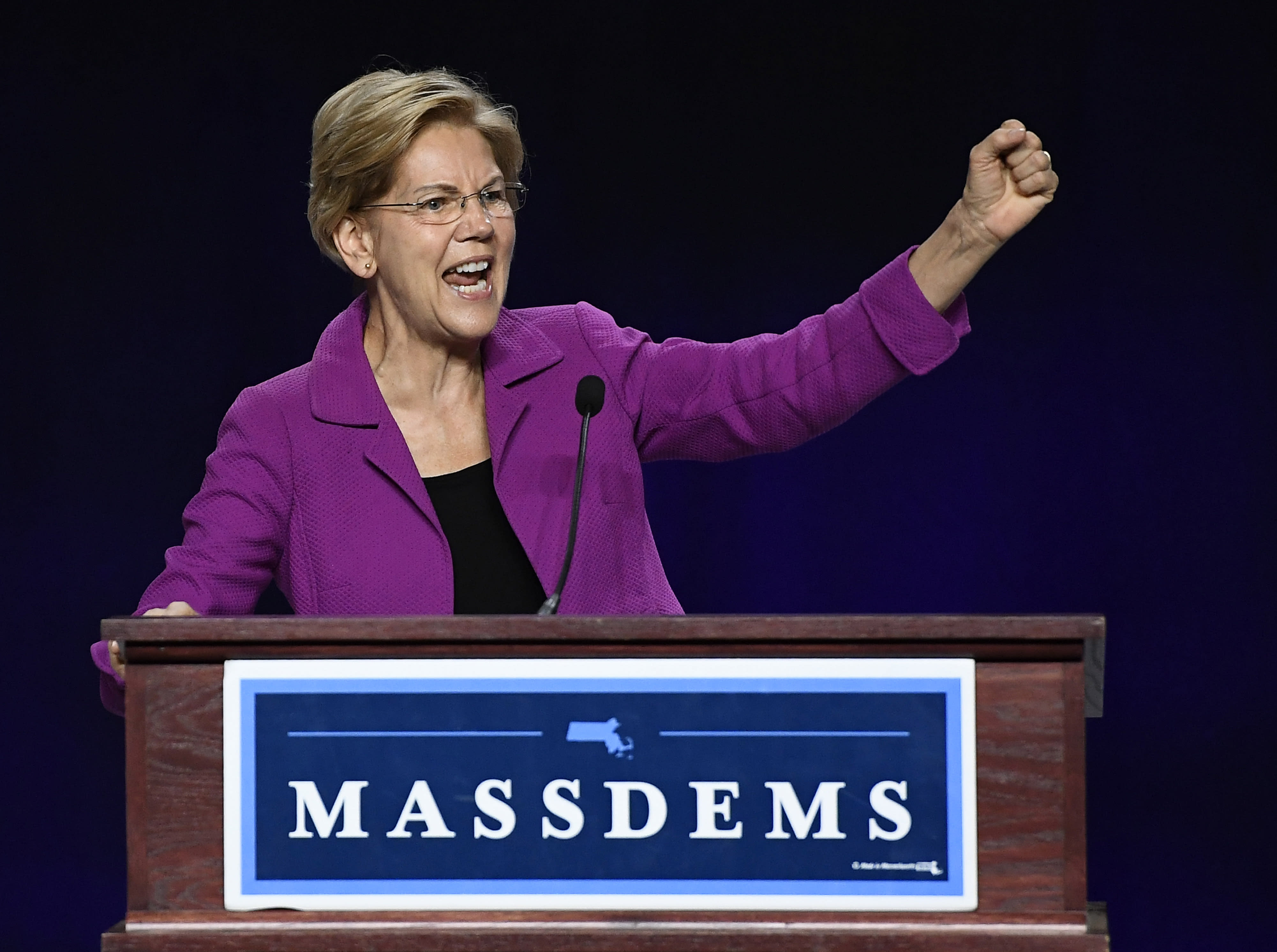 Trump is 'corruption in the flesh', presidential contender Warren says