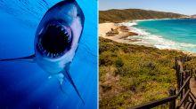 Man dies in shark attack at popular WA beach