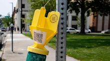 There are about 250 green and yellow objects hanging throughout Boise. What are they?