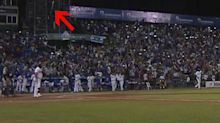 Dominican Winter League slugger almost bat flips out of the stadium