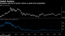 Ignored by Big Banks, Smaller Gold Miners Are Paying More to Expand