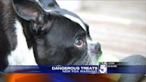 New FDA Warning After 600 Pet Deaths Linked to Tainted Treats