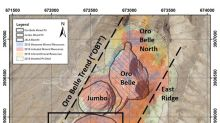 NewCastle Gold Intersects Further High-Grade at Oro Belle South with 31.32 g/t Gold over 12.8 Metres