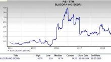 Is Blucora (BCOR) a Profitable Pick for Value Investors Now?